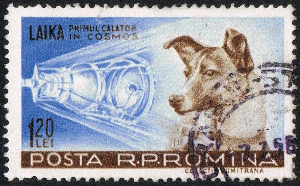 Почтовая марка, изображающая собаку Лайку, Румыния